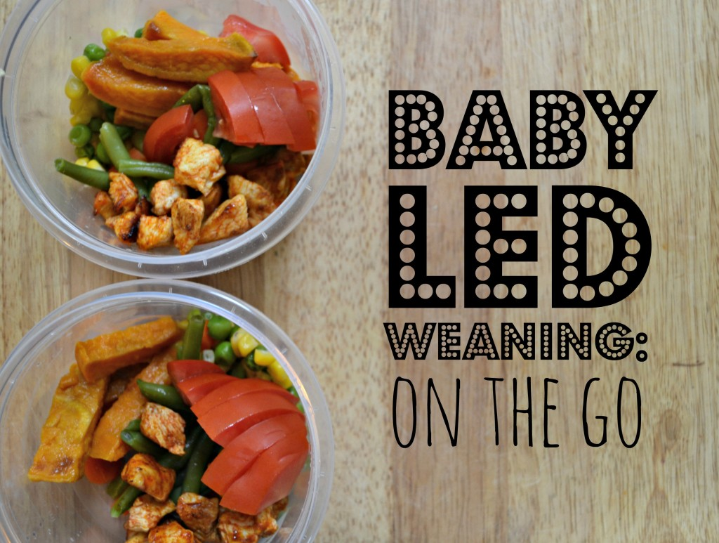 Baby Led Weaning On the Go