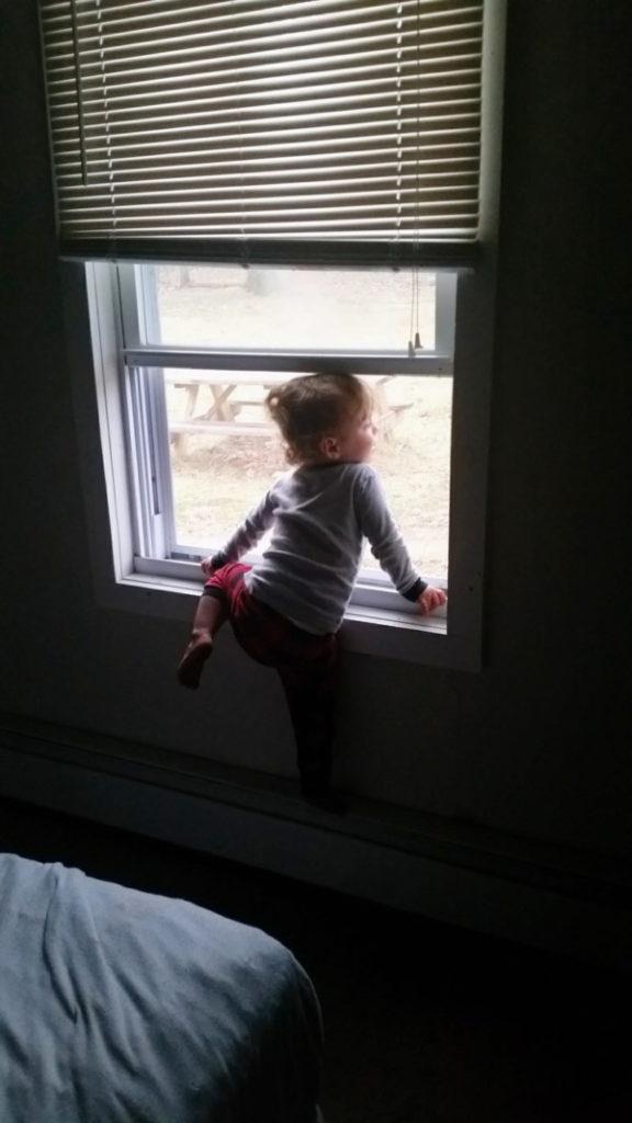 Ryan in window