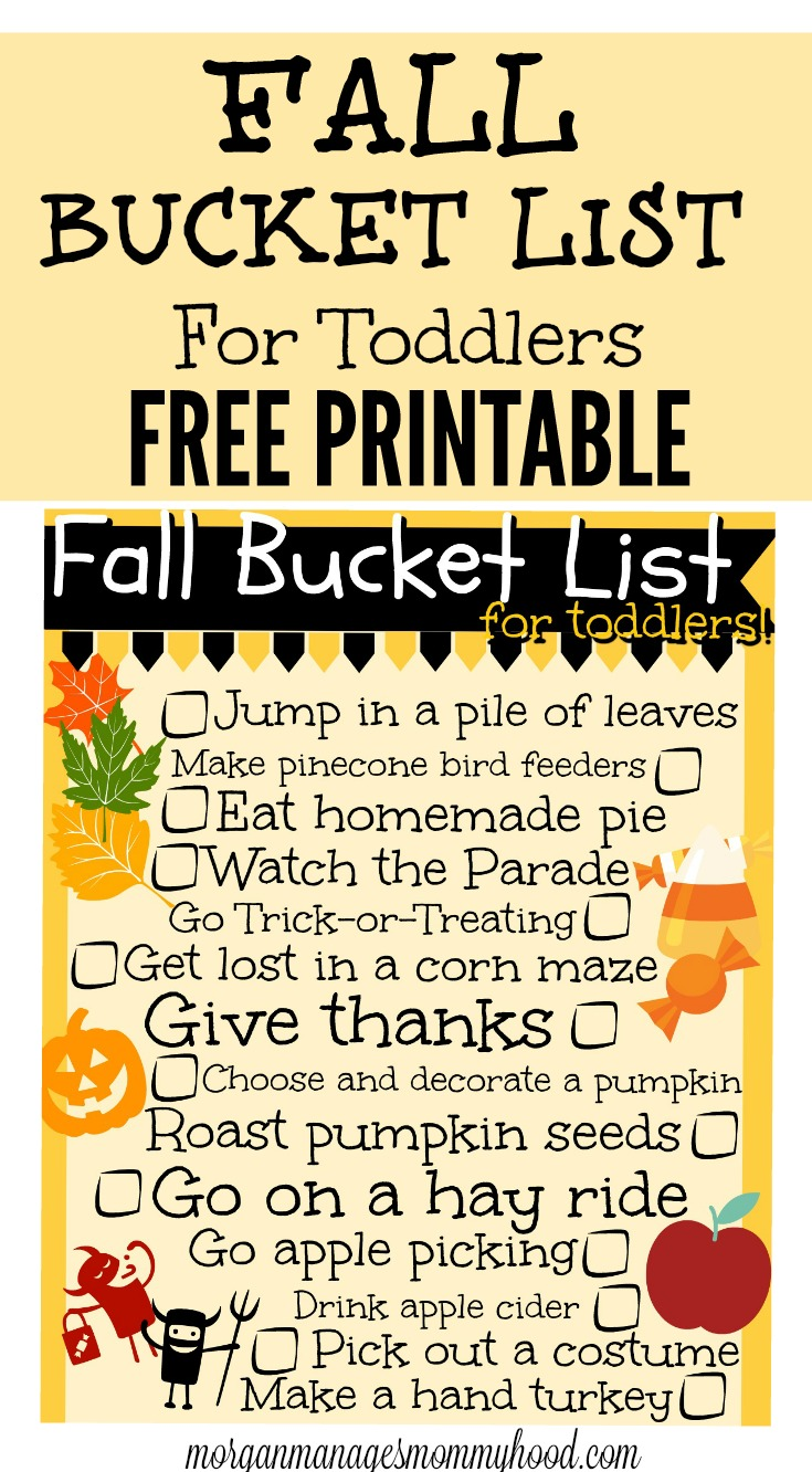 Looking for some fun things to do with your toddler this fall? Make sure you're getting the most out of the season with these fall activities with toddlers!