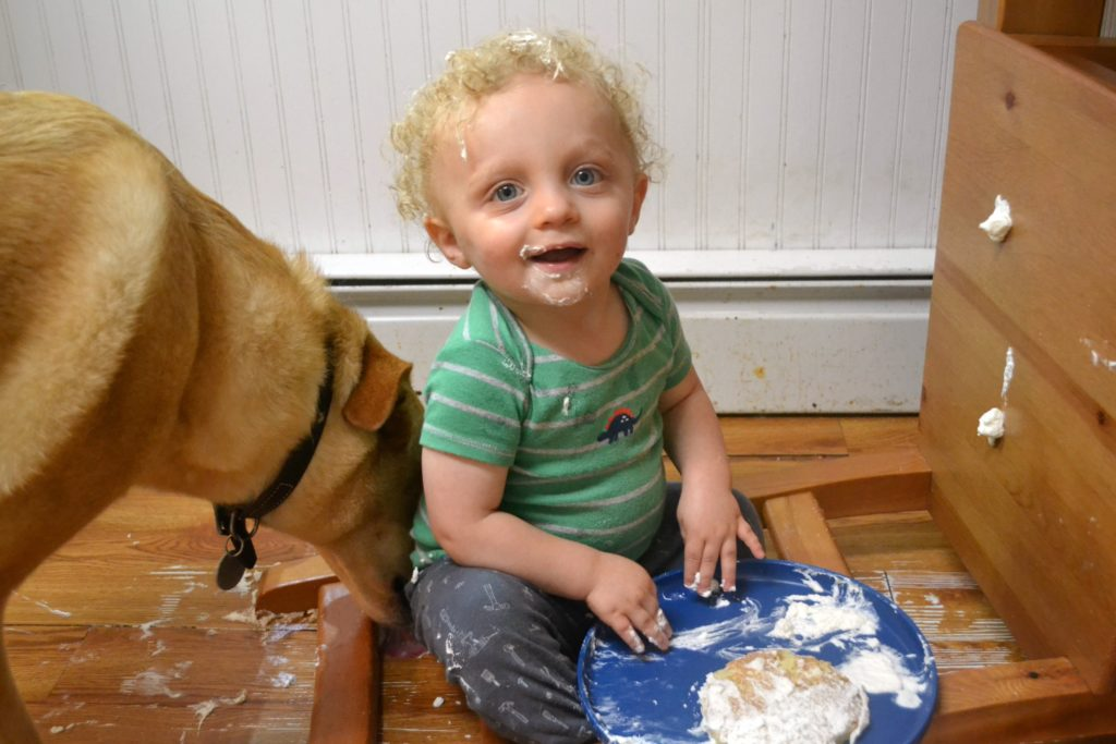 toddler eating a plate of pancakes covered in whipped cream with a dog licking up th emess
