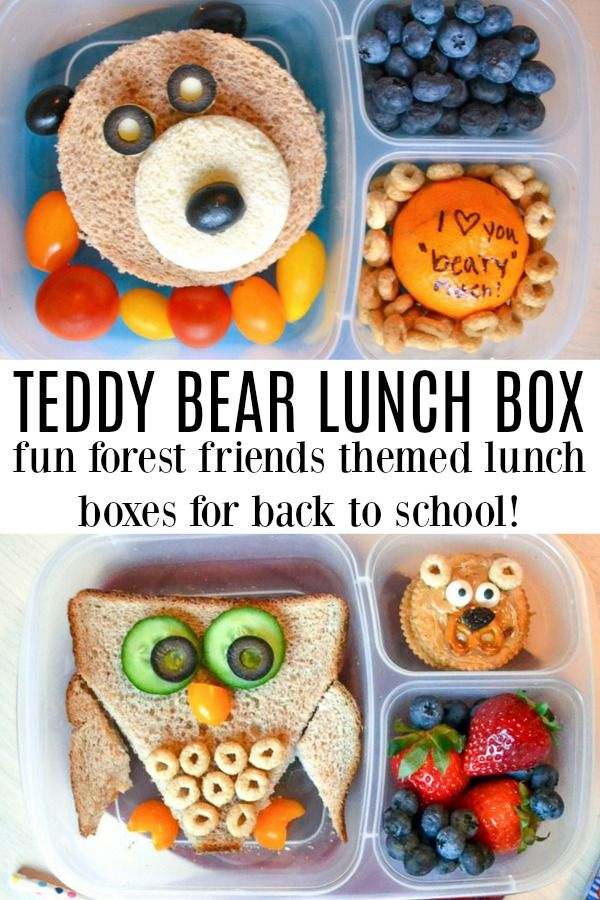 [AD] This teddy bear lunch box is a fun way to bring a cuddly friend to lunch time. These forest friend lunches are perfect for back to school lunches - fun and super simple. From a fox lunch box to an owl lunch box, your kids are going to love bringing the great outdoors into their fun school lunch.
