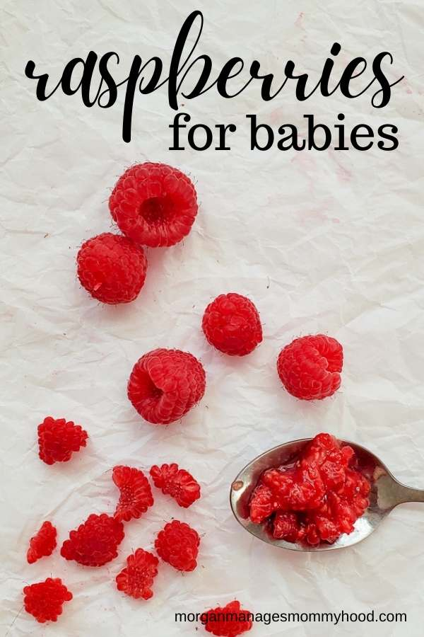 a pinable image showing raspberries in different states for different ways to serve ti a baby on a white background
