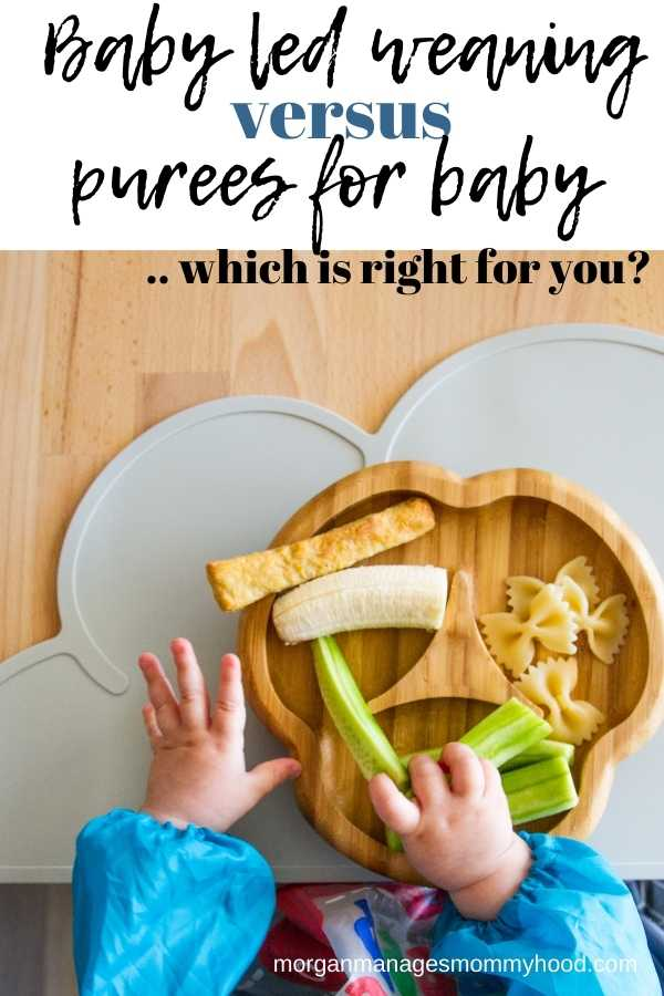 an overhead shot of.a baby eat using baby led weaning with the food on a baby plate with text overlay reading baby eld weaning versus purees for baby - which is right for you?